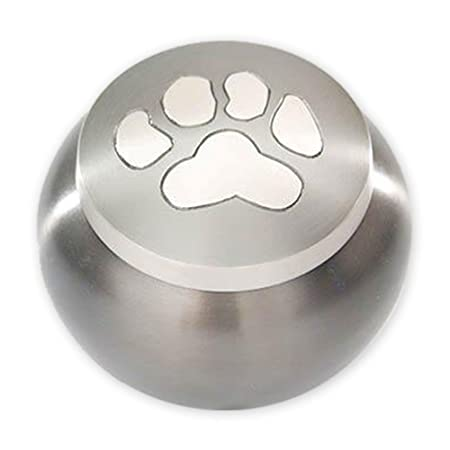 Beautiful Life Urns Pawsitively Cherished Pet Urn – Unique Cremation Urns for Pets, Small, Slate