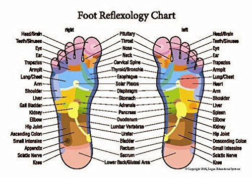 reflexology hand foot chart - 1