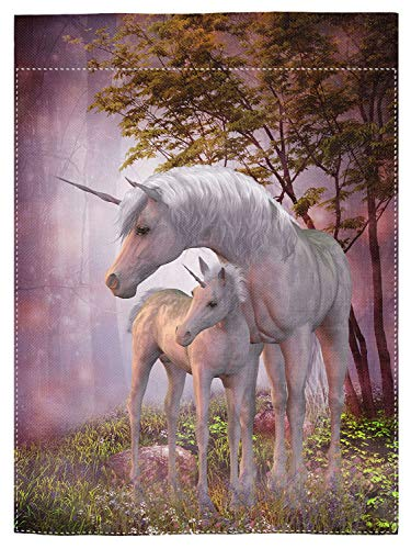 - pingpi Unicorns Mare and Foal Garden Flag Double Sided 12.5