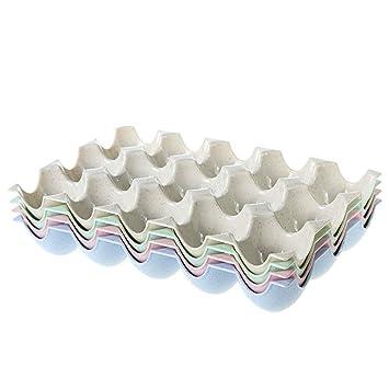 BESTONZON Caja de soporte para huevos de 15 tazas Bandeja de almacenamiento de refrigeradores Bandeja de