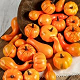 Darice Mini Decorative Realistic Fall Pumpkins and Gourds - Pkg of 24