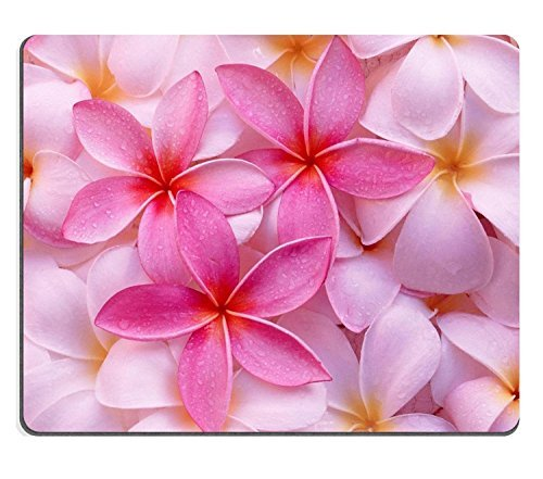 Tropical Pink Plumeria Flowers exotic Hawaii leis fresh pretty Mouse Pads Customized Made to Order Support Ready 9 7/8 Inch (250mm) X 7 7/8 Inch (200mm) X 1/16 Inch (2mm) High Quality Eco Friendly Cloth with Neoprene Rubber Liil Mouse Pad Desktop Mousepad Laptop Mousepads Comfortable Computer Mouse Mat Cute Gaming Mouse_pad (Hawaii Fresh Flowers)