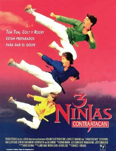 Amazon.com: Movie Posters 3 Ninjas Kick Back - 11 x 17 ...