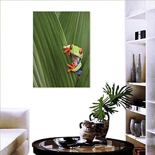 (Animal Customize Wall Stickers Red Eyed Tree Frog Hiding in Exotic Macro Leaf in Costa Rica Rainforest Tropical Nature Background Wall Stickers 16