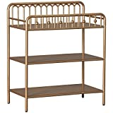 Little Seeds Monarch Hill Ivy Metal Changing Table, Gold