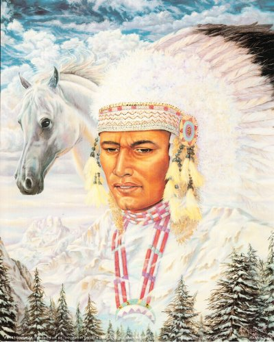 Native American Indian Horse Art Print Poster