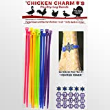 NEW! Numbered Poultry Leg Bands * Blue Sheriff Stars and Purple Flowers* Fits Sizes 7 to 14 Chickens Geese Ducks Turkey