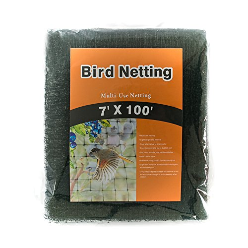 BIRD NETTING-Stops Hawks,Blue Herons from Plants and Vegetables - Perfect For Garden netting and Protective net- Black 7x100 ft (Halloween 3 Stop It)