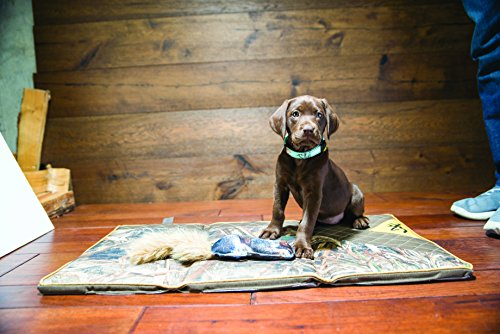 Browning Dog Crate Mat Hunting Dog Crate Mat, Realtree Camo, 30''X17'', Max, Large by Browning (Image #1)'