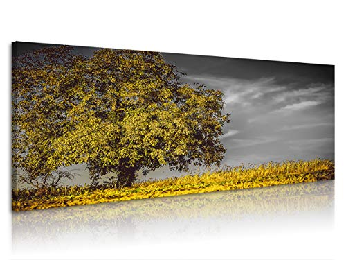Natural art Trees Modern Photo Artwork Prints on Canvas for Wall Decor Wooden Frame 18x40inx1, Yellow