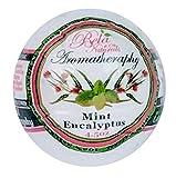 Luxury Mint Eucalyptus Bela 100% Natural Handmade