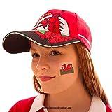 10 x Wales Temporary Tattoo Set - Wales Fan Tattoo Flag (10)
