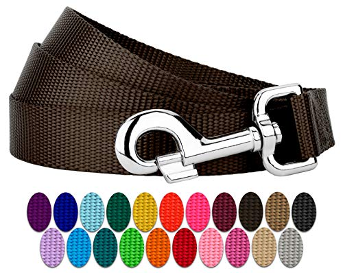 Country Brook Petz | Vibrant 22 Color Selection | Nylon Dog Leash (Brown, 1 inch Width, 6 Foot)