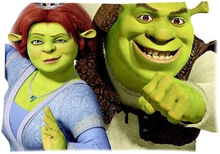 Shrek And Fiona Pillowcases Custom