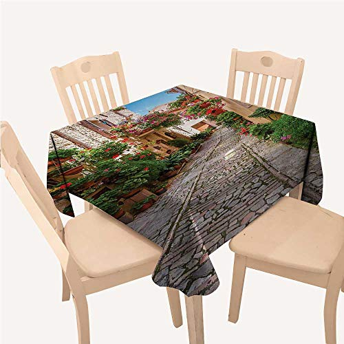 WilliamsDecor Tuscan Christmas Tablecloth Napkins Historical Mediterranean Street Flowers Italian Town in Sunny Day UmbriaIvory Green and Red Square Tablecloth W60 xL60 inch ()