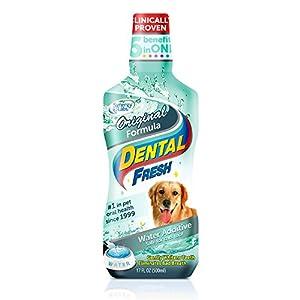 SynergyLabs Dental Fresh Original Formula, 17 ounces
