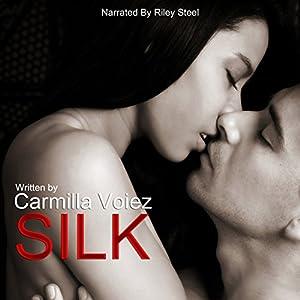 Silk Audiobook