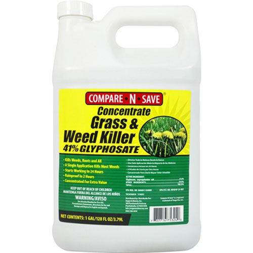 Compare-N-Save Concentrate Grass and Weed Killer, 41-Percent Glyphosate, 1-Gallon (Spectracide Weed And Grass Killer)