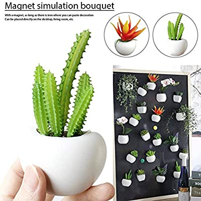HEYJUDY Artificial Succulent Plant Refrigerator Sticker Plastic Magnet Hanging Plant Vase Potted Decors DIY for Home Living Room Kitchen: Home & Kitchen