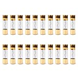 Areyourshop 20Pcs AGU Fuse Car Audio Power Safety Protection Glass Tube Gold Plated 40A