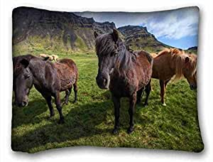 Custom Characteristic Animal Custom Cotton & Polyester Soft Rectangle Pillow Case Cover 20x26 inches (One Side) suitable for Full-bed