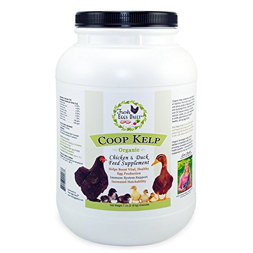 Fresh Eggs Daily Coop Kelp Organic Chicken and Duck Feed Supplement ()