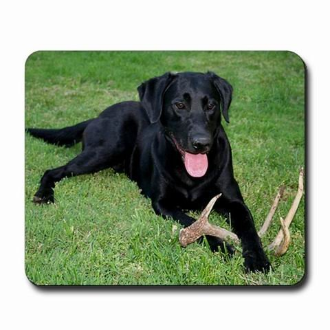 Echonie Black Lab Storm Customized Mouse Pad Rectangle Mouse Pad Gaming Mouse mat 0035