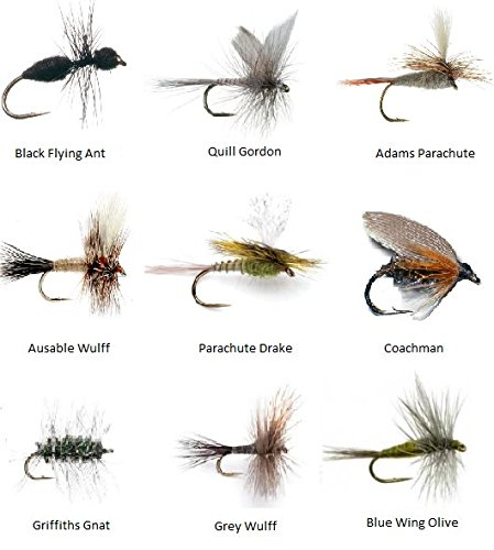 Feeder Creek Fly Fishing Flies Assortment for Trout Fishing and Other Freshwater Fish - 36 Dry Flies - 18 Patterns