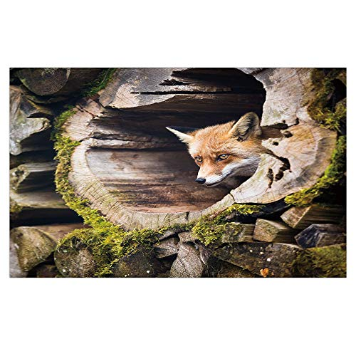 iPrint 3D Floor/Wall Sticker Removable,Animal,Forest Nature Wild Fox with Hazel Eyes in a Wooden Carved Tree wth Moss Art Print,Multicolor,for Living Room Bathroom Decoration,35.4x23.6