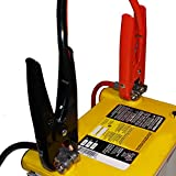 Bee-Auto-Care-Booster-Cable-Heavy-Duty-Jumper-Cables-with-Zippered-Carrying-Bag