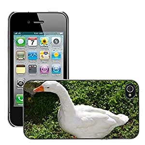 Print Motif Coque de protection Case Cover // M00126157 Oca Naturaleza Animal Animales Plumas // Apple iPhone 4 4S 4G