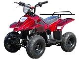 ATA-110B3 TaoTao Kids Gas 110cc Sport ATV - Burgundy
