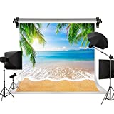 Kate Beach Backdrop Sea Blue Sky Background Palm Trees Summer Background for Photography Photo Studio No Wrinkle Cloth Backdrop 10x10ft(3x3m)