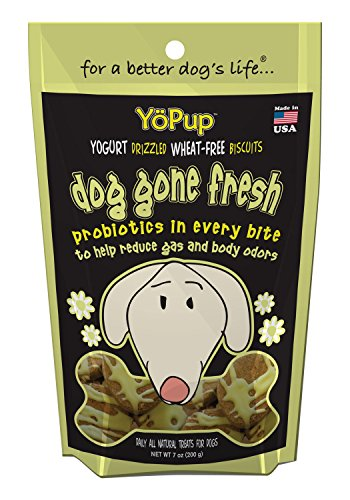 Yoghund YoPup Dog Gone Fresh Wheat Free Biscuits with Yogurt Probiotic Icing for Pets, 7-Ounce (Biscuit Yogurt)