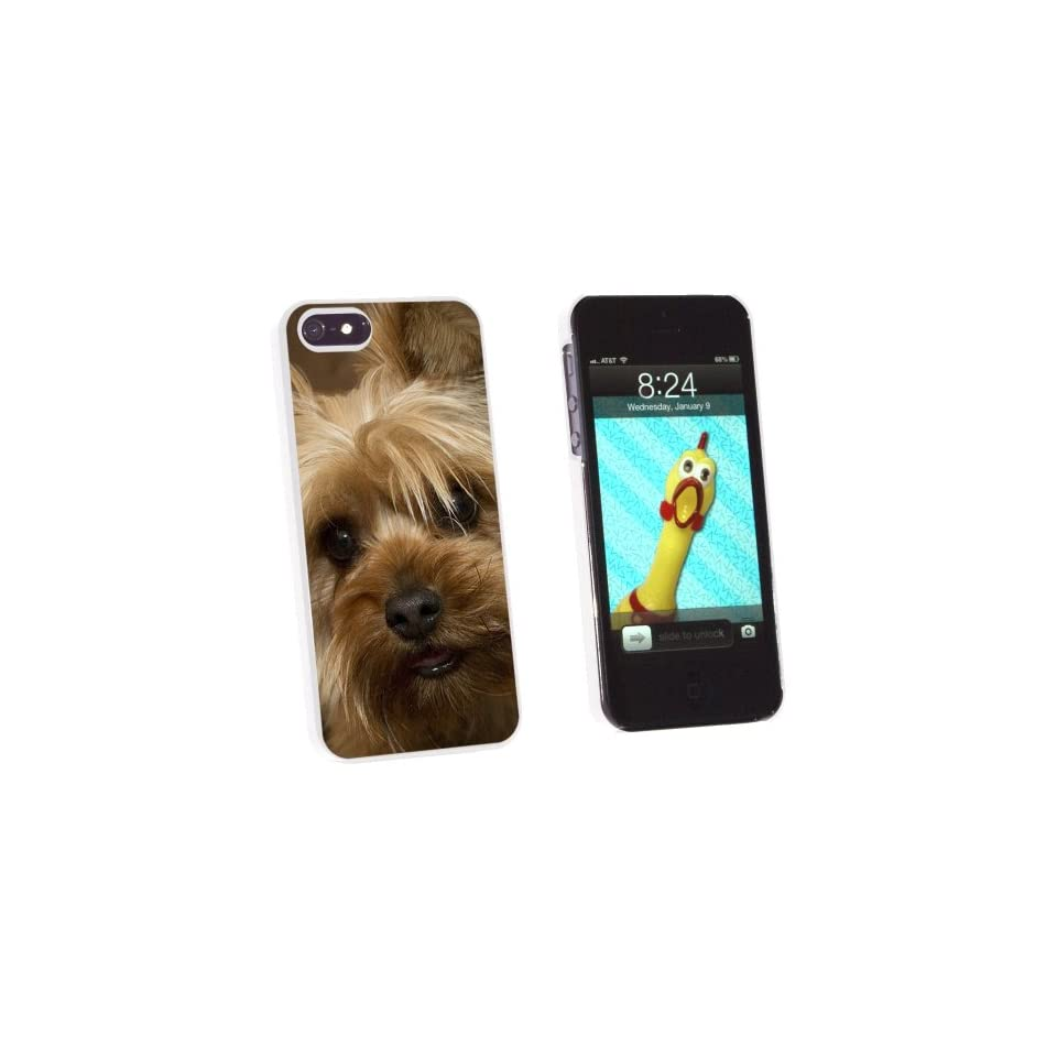 Graphics and More Yorkshire Terrier Yorkie Dog   Snap On Hard Protective Case for Apple iPhone 5/5s   Non Retail Packaging   White