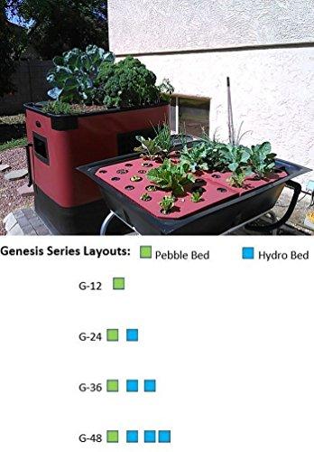 51OyLV6 xJL - Aquaponics System Complete Kit | Genesis G-24 Model | Includes 24 Sq. Ft. Grow Bed, 140 Gallon Fish Tank, Pre Cut Plumbing, Pumps, Clay Pebbles