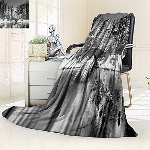 YOYI-HOME Luxury Double-Sides Reversible Printed Blanket Gapstow Bridge in Winter Central Park New York City in Black and White Travelling and Camping Blanket/47 W by 31.5