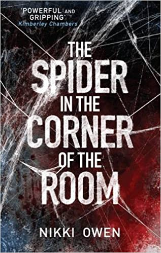 The Spider in the Corner of the Room by Nikki Owen (2015-06-04)