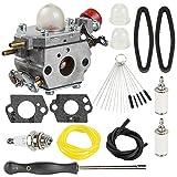 Coolwind 753-06288 Carburetor + Tune Up Kit Air Filter for Troy Bilt 25CC String Trimmer Leaf Blower TB35EC TB2044XP TB2040XP TB2MB TB430 Murray M25B M2560 MS2550 MS2560 MS9900 Remington RM430
