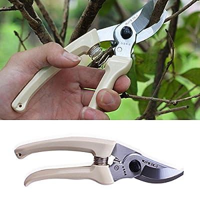 Fruit Tree Bonsai Pruning Shear Scissor Hedge Trimmer Gardening Tool // Fruto del árbol bonsai la poda tijera cizalla herramienta de jardinería cortasetos