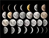 EVERY PHASE OF THE MOON GLOSSY POSTER PICTURE PHOTO full crescent lunar