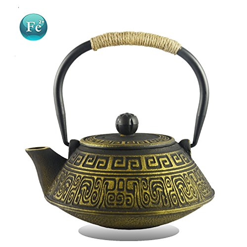 Hwagui - Chinese Style Cast Iron Teapot with Stainless Steel Infuser/Filter to Make the Best Tea Brewing(800ml/27oz)