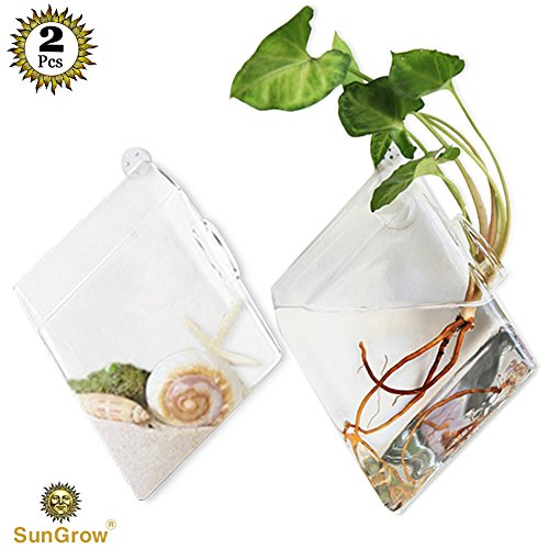 51OyfeK39rL - SunGrow 3 Hanging Glass Terrariums by Spherical Air Plant Orb - Handmade, heat-resistant glass - Create refreshing atmosphere in Terrace Garden - Rocks, plants & other accessories NOT included