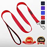 contact customer sup - Heavy Duty Reflective Dog Leash with Comfortable Padded by ZUCCHI for Training 5 Feet Long 1 Inch Wide and 2mm Thick Perfect for Medium to Large Pet