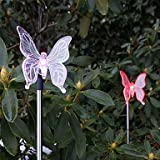 Set of 2 Garden Color Changing Solar Butterfly Stake Lights by lichi LED Lighting