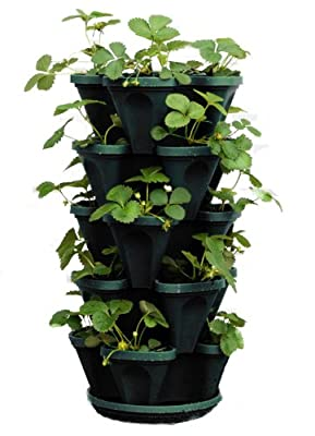 5-Tier Stackable Strawberry, Herb, Flower, & Vegetable Planter - Vertical Gardening Indoor / Outdoor Stacking Garden Pots