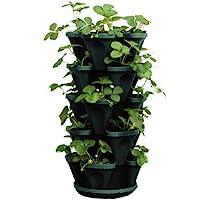 Mr. Stacky 1305-HG 5-Tier Stackable Strawberry, Herb, Flower, & Vegetable Planter- Vertical Gardening Indoor / Outdoor…