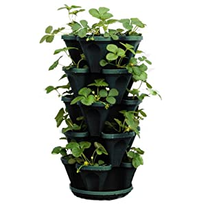 5-Tier Stackable Strawberry, Herb, Flower, & Vegetable Planter – Vertical Gardening Indoor / Outdoor Stacking Garden…