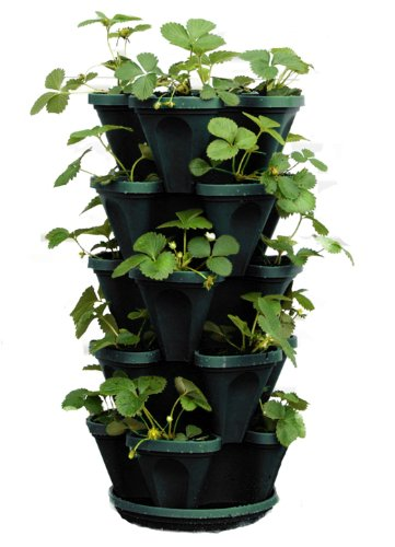 Mr. Stacky 1305 HG 5 Tier Stackable Strawberry, Herb, Flower,