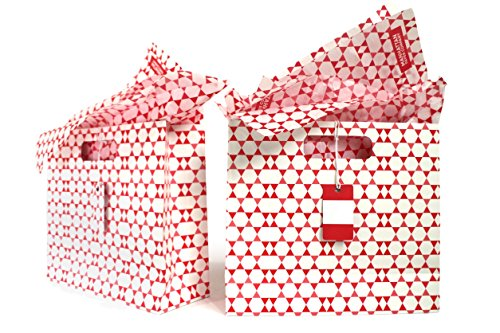 Gift Bag Kit | 2 Medium Gift Bags with Tissue Paper & Gift Tags | Medium Gift Bag 11 x 9.65 x 4 inches | Manhattan Paper Company (Valencia Red)
